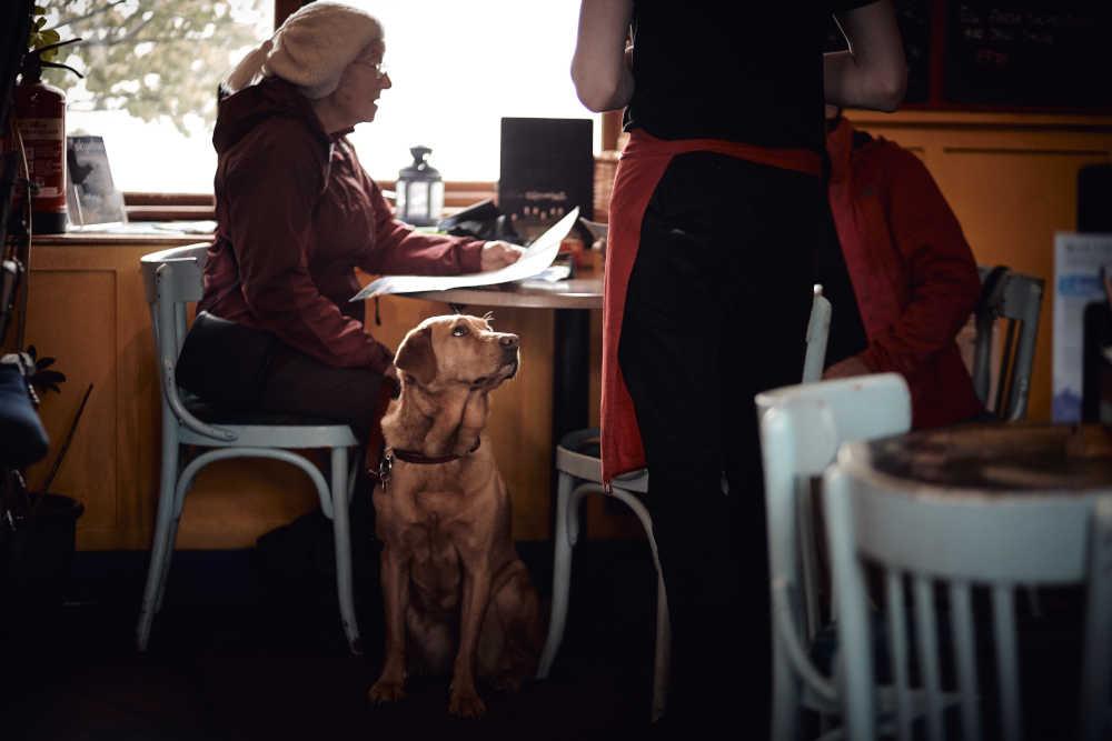 carer in cafe